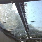 Glasdach bevor der Fensterreinigung https://glasklar-fensterreinigung.de Nürnberg Erlangen Ansbach Neustadt