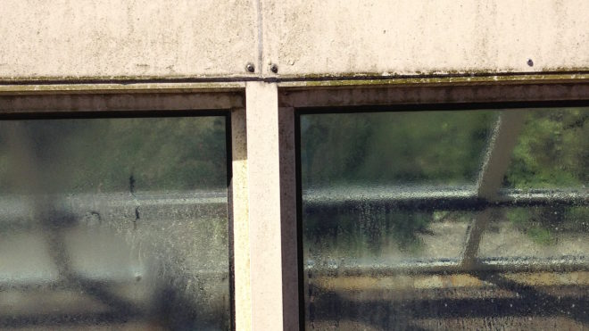 Sehr schmutzige Wintergarten Dach https://glasklar-fensterreinigung.de